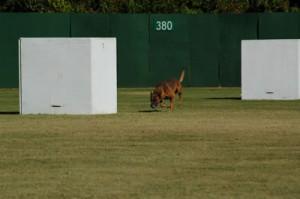11-2-2007_Greensboro_PDI_Trial_100_fs