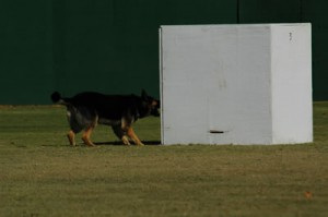 11-2-2007_Greensboro_PDI_Trial_92_fs